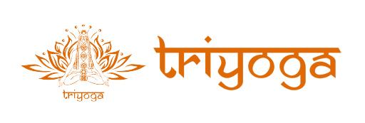logo_sponsors_triyoga1.jpg